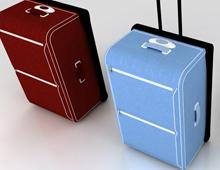 XXI | suitcase series